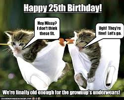 funny+25th+birthday+(16) Funny 25th birthday, Birthday wishes messages