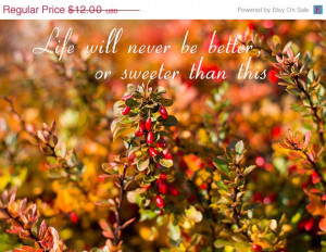 Autumn photography, Sweet November quote, Nature, Forest, Woodland ...
