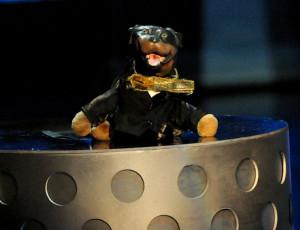 triumph-insult-comic-dog-present-88088282.jpg