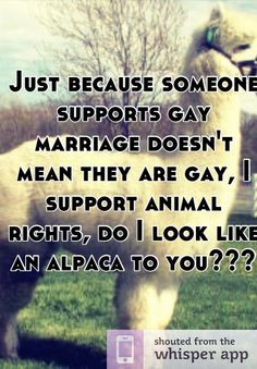 someone supports gay marriage doesn't mean they are gay, I support ...