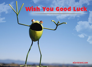 ecards-animals-wish-you-good-luck-434.jpg