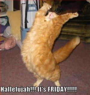 Good Morning Friday Funny