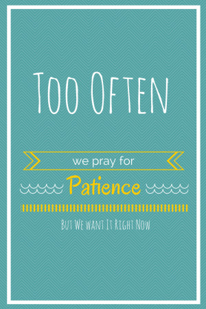 Patience Quotes Patience quote