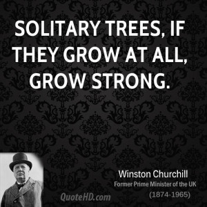 Solitary trees, if they grow at all, grow strong.