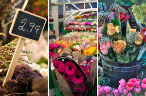Here are the best florists in Toronto. For more ideas of where to buy ...