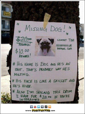 Missing Dog: Reward Discounted