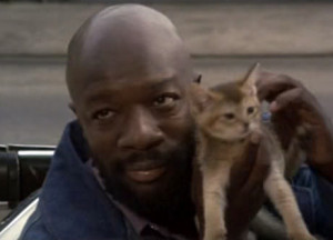 Tags cat isaac hayes music legends with cats photo