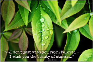 It Rained Raindrops