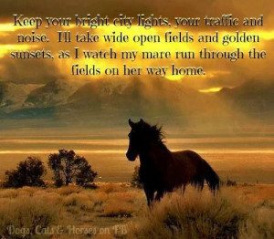 Horses and wild open spaces