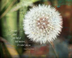 Nature Photography, Nature Quote,Thoreau quote, Artistic, Dandelion ...