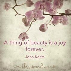 ... ?ref=tn_tnmn A thing of beauty is a joy forever | John Keats | Quote