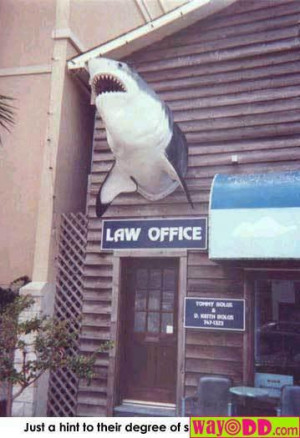 funny true quotes from courtrooms and funny quotes about lawyers