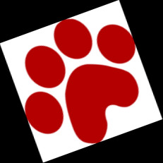 University of Arizona Wildcat Paw Print