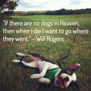 quotes about dog death