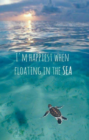 Ultimate Happiness quotes #Quotes