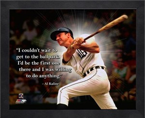 detroit-tigers-al-kaline-pro-quote.jpg