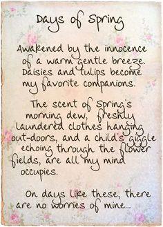 Spring Poem More