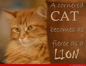 Go Back > Images For > Lion Quotes And Sayings