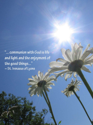 First Communion Quotes Eucharist http://actjustly.blogspot.com/2011/07 ...