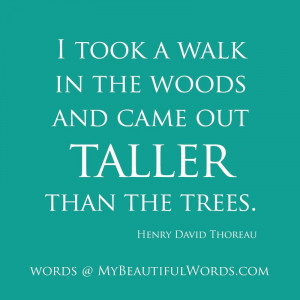 Into the Woods Quotes Image Gallery Detail
