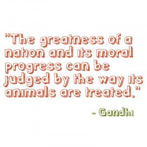 vegetarian quotes funny anti vegetarian quotes funny vegan funny vegan