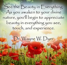 See the beauty in everything! More