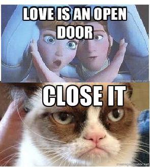 Frozen~Grumpy cat lol