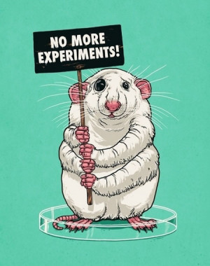 funny-rat-lab-experiments