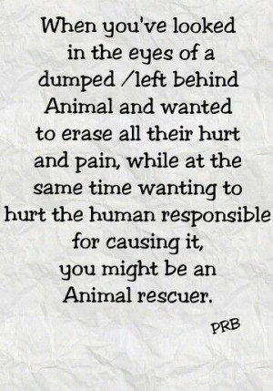 Animal rescue, dumped, left behind, PRB