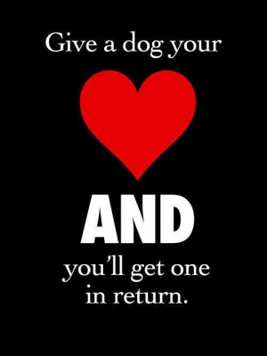 dogs love is unconditional