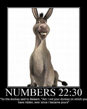 The Bible Talking Donkey