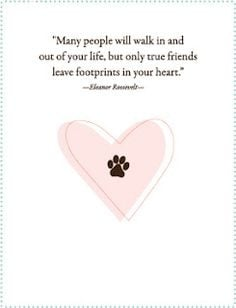 Commemorate the loss of a pet with a pet sympathy card.. RIP Juliet ...