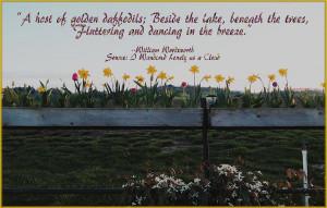 Host Of Daffodils Digital Art - A Host Of Daffodils Fine Art Print