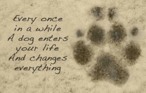 Dogs Quotes, Puppies, Heart, Friends, Pets, Fur, So True, Dogs Lovers ...