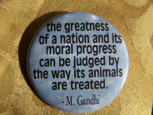 Animal Rights Quotes Gandhi quote animal rights