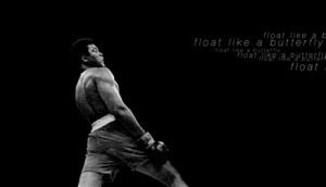 exercise animating Muhammad Ali's famous Float like a Butterfly quote ...