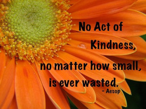 No act of kindness, no matter how small, is ever wasted. – Aesop