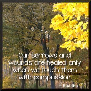 Healing Quotes - Our sorrows and wounds are healed only when we touch ...