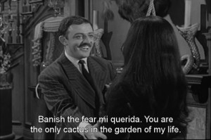 loved watching this show. I think I'm still looking for my Gomez ...