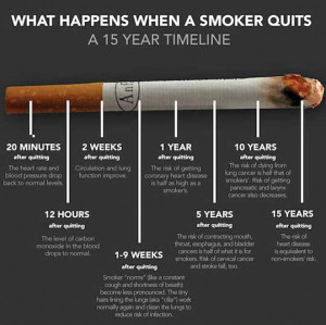 Quit Smoking Funny Quotes Smokers' helpline online.