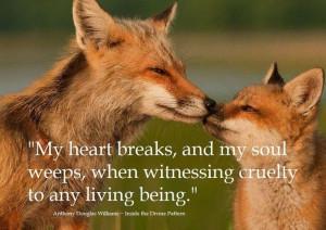 Cruelty to animals - quote