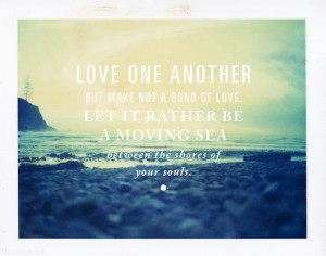 love it love one another