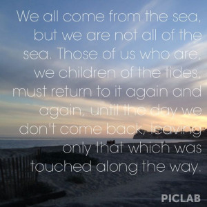 Ocean Dreams, Chase Mavericks Great, Chasing Mavericks, Quotes Sayings ...