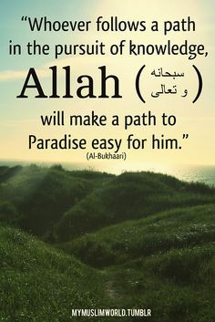 us in Surat Taha [20:114] what to say in order to gain knowledge ...
