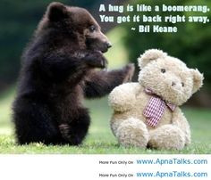 com more bears hug animal baby black bears bears cubs teddy bears ...