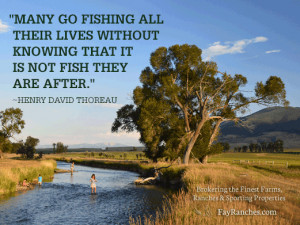 Fly Fishing Quotes