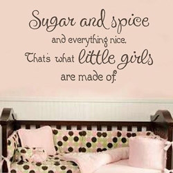 2093 SUGAR AND SPICE Girl's Wall Quote