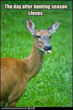 site enjoy your 9 day deer gun season good luck and good hunting a ...