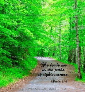 He leads me in the paths of righteousness.