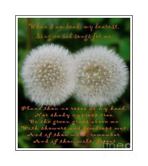 Double Wishes Quote When I Die Dandelion Poster By Barbara Griffin
